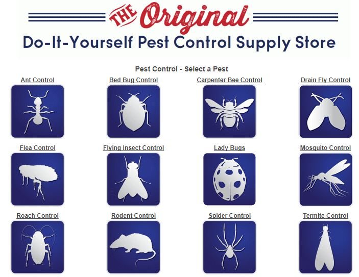 Pest Control Chemical Supplies in Bangkok, Thailand